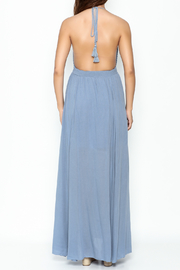 Hommage Skylar Maxi Dress - Back cropped