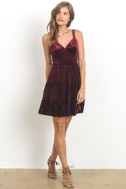 Hommage Wine Velvet Dress - Product Mini Image