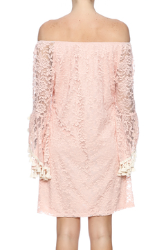 Honey Me Pink Lace Tunic - Alternate List Image