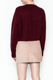 Honey Punch Crop Sweater - Back cropped