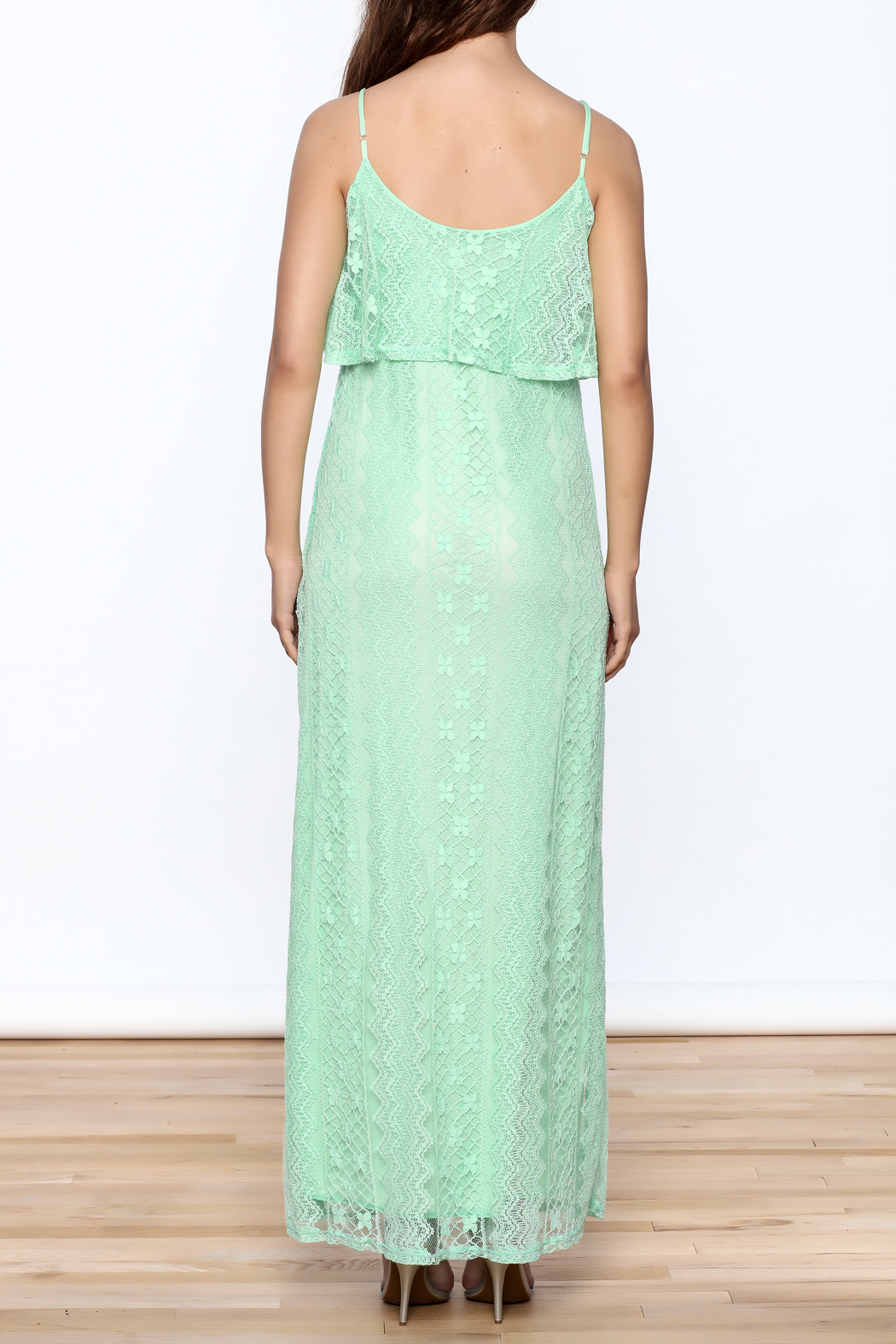 Honey Punch Lace Maxi Dress - Back Cropped Image