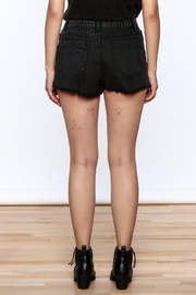 Honey Punch Vintage Tie Shorts - Back cropped