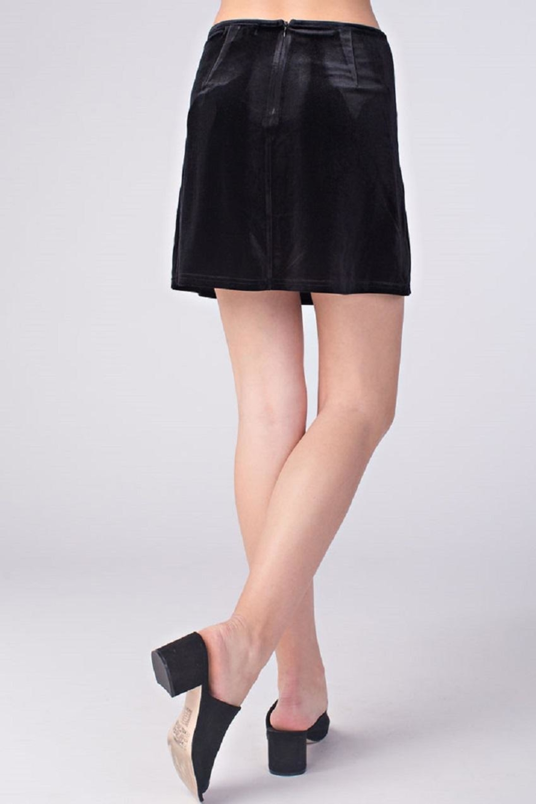 Honey Punch Black Velvet Skirt - Front Full Image