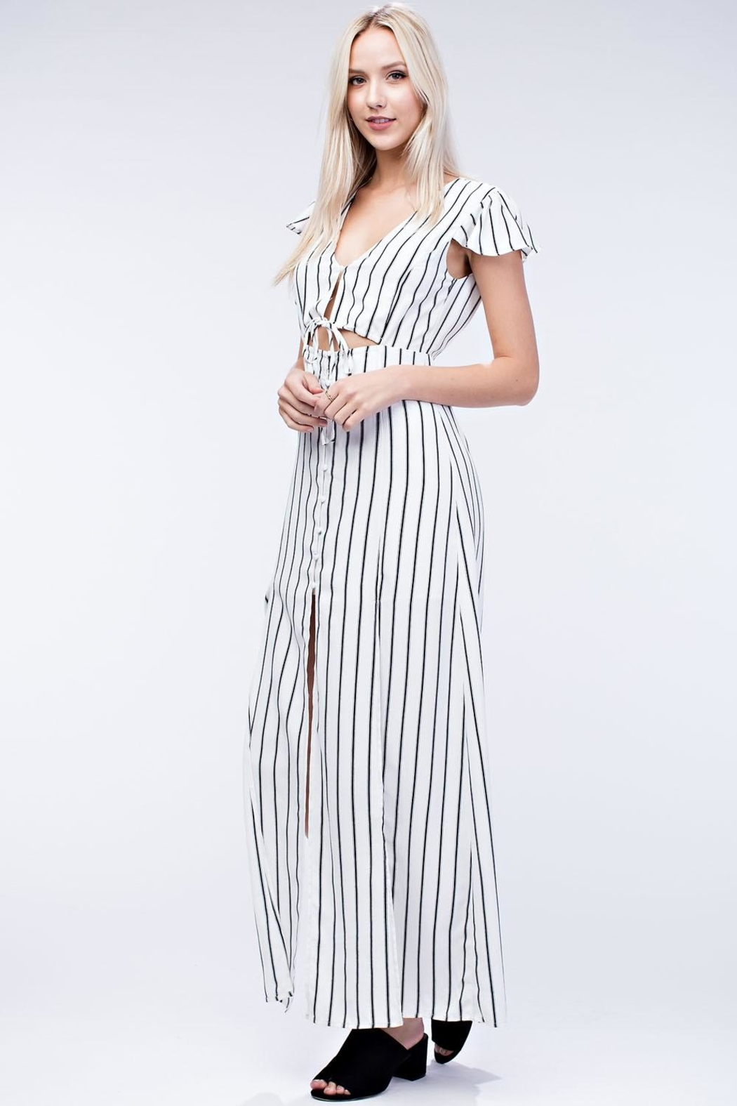 Honey Punch Stripe Maxi Dress - Front Full Image
