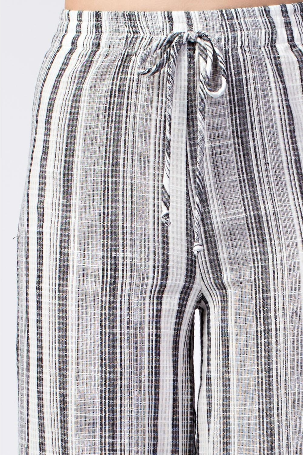 Honey Punch Stripe Pants - Back Cropped Image
