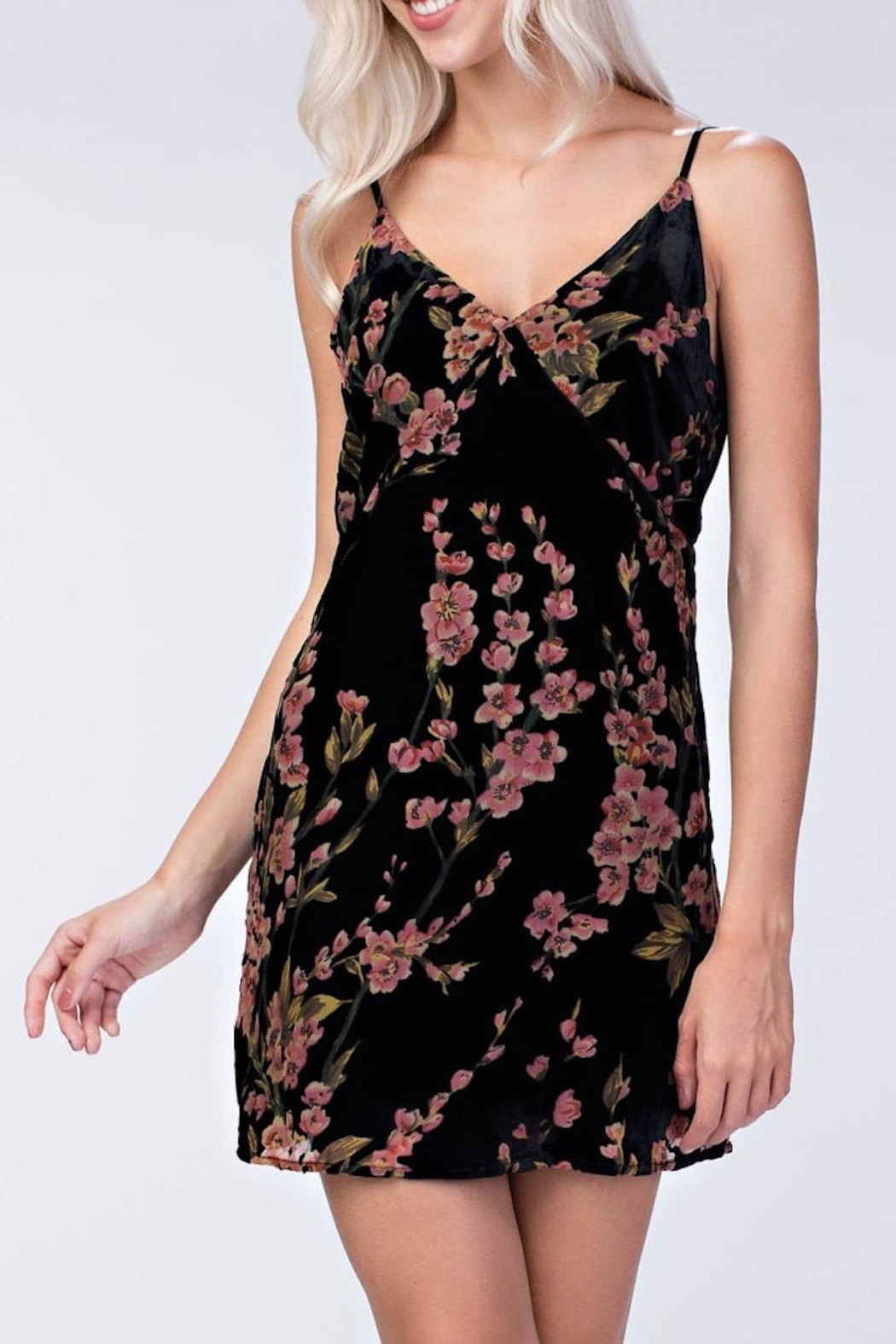 honeybelle Velvet Floral Dress - Front Cropped Image