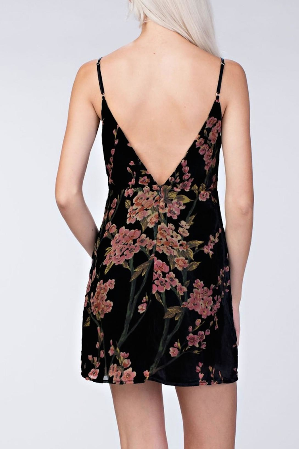 honeybelle Velvet Floral Dress - Front Full Image