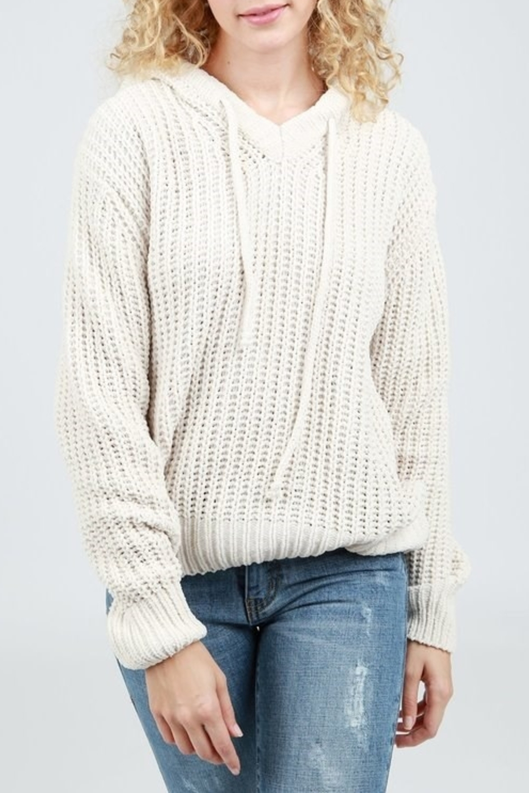 Pol Cloth Hoodie Sweater - Front Cropped Image