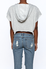 Hot & Delicious Grey Crop Top - Back cropped