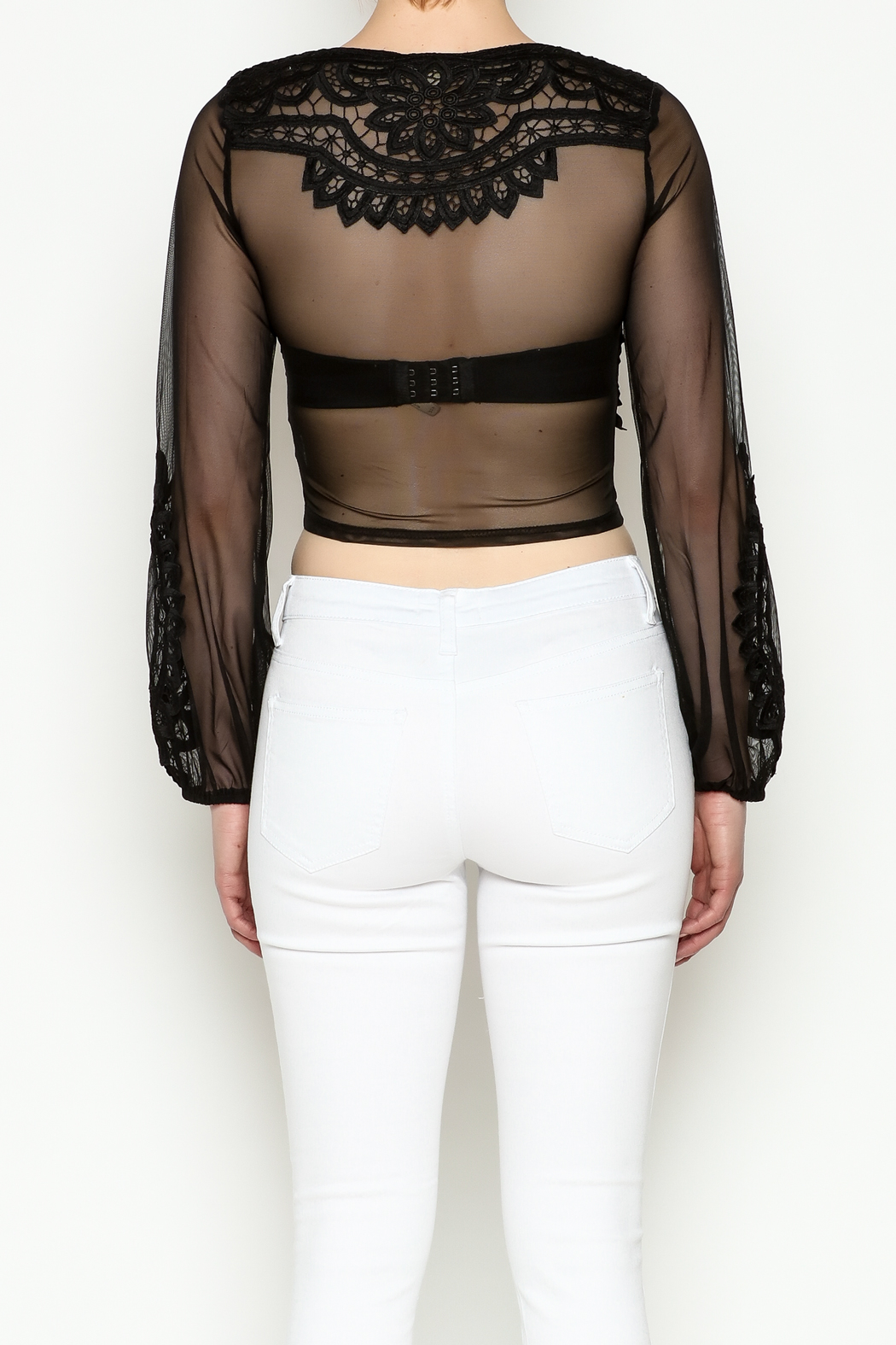 Hot & Delicious Lace Cropped Blouse - Back Cropped Image