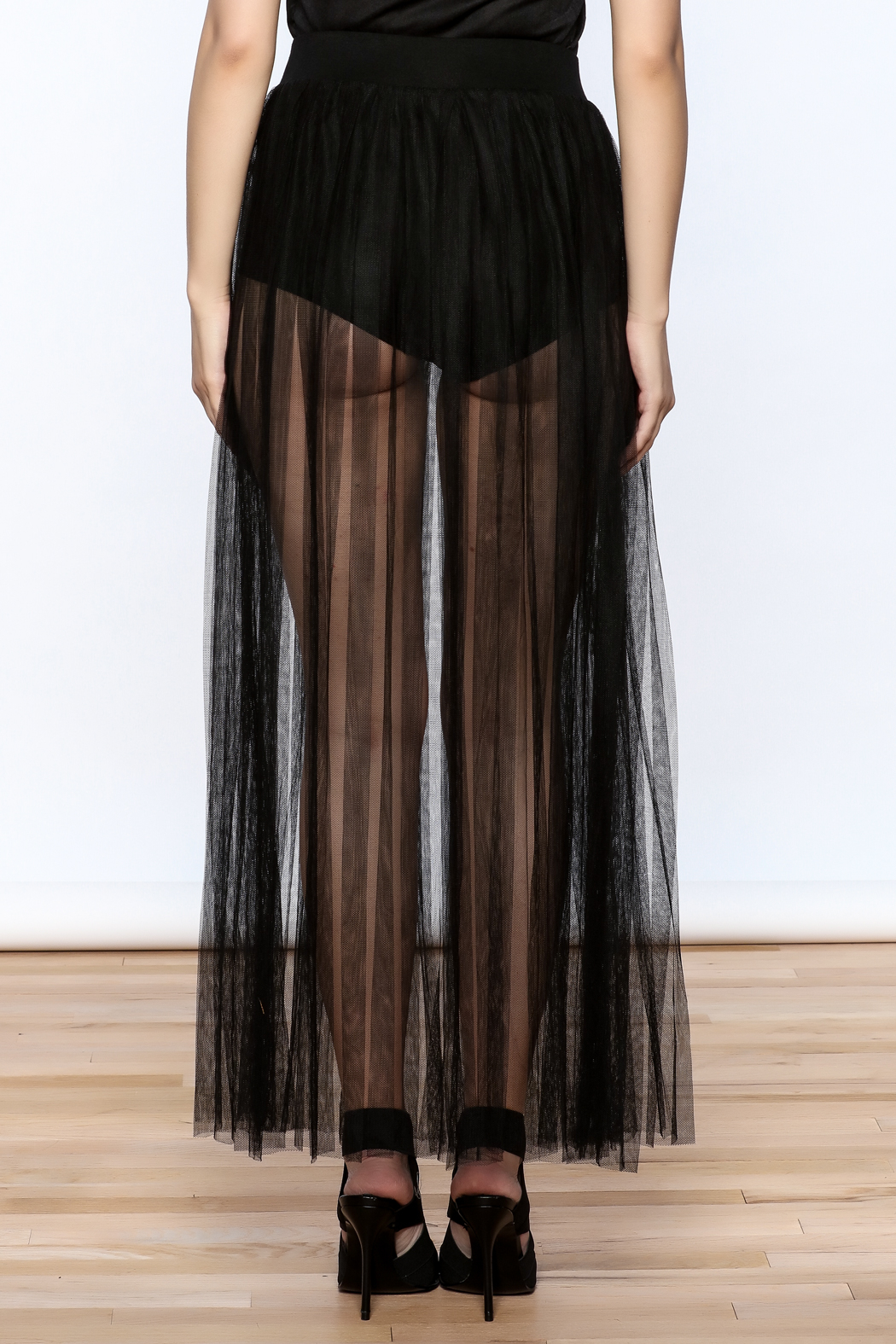 Hot & Delicious Mesh Maxi Skirt - Back Cropped Image
