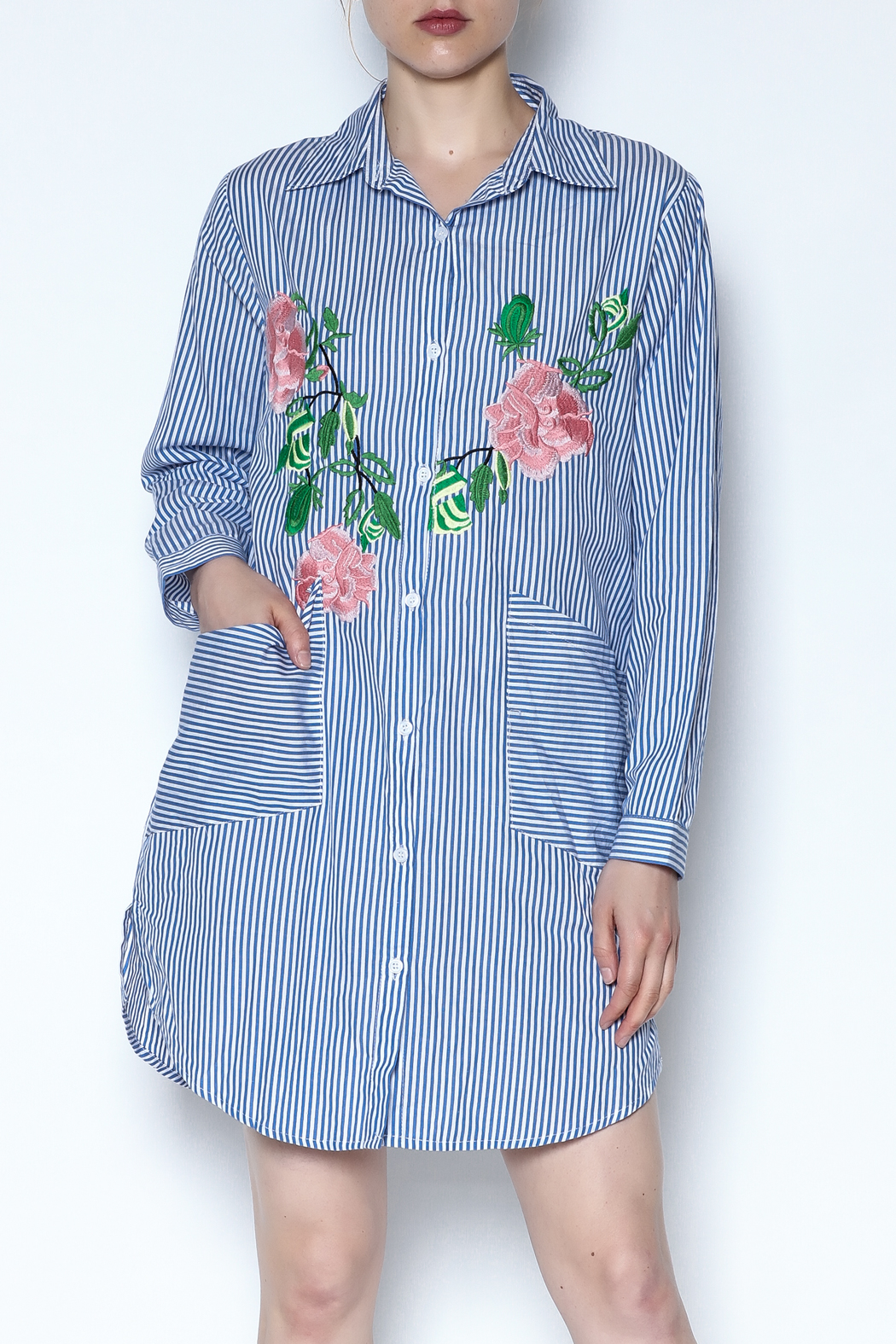 Hot & Delicious Striped Embroidered Dress - Main Image