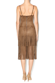 Hot & Delicious Fringe Dress - Back cropped