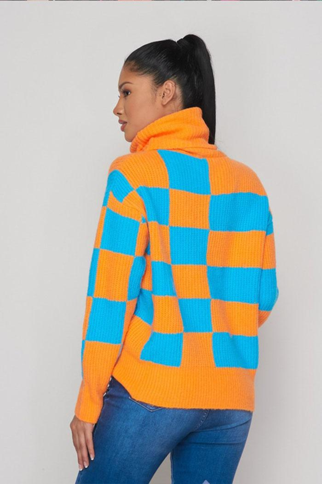 Hot & Delicious Color Block Sweater - Back Cropped Image