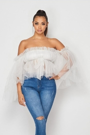 Hot & Delicious Mesh Tulle Top - Product Mini Image