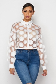 Hot & Delicious Sheer Mesh Blouse - Front cropped