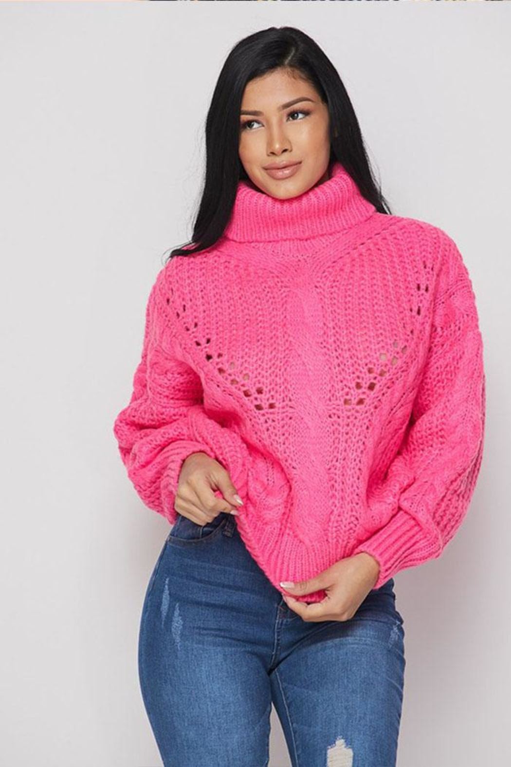 Hot & Delicious Turtle Neck Sweater - Front Full Image