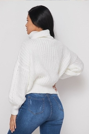 Hot & Delicious Turtle Neck Sweater - Other