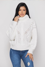 Hot & Delicious Turtle Neck Sweater - Product Mini Image