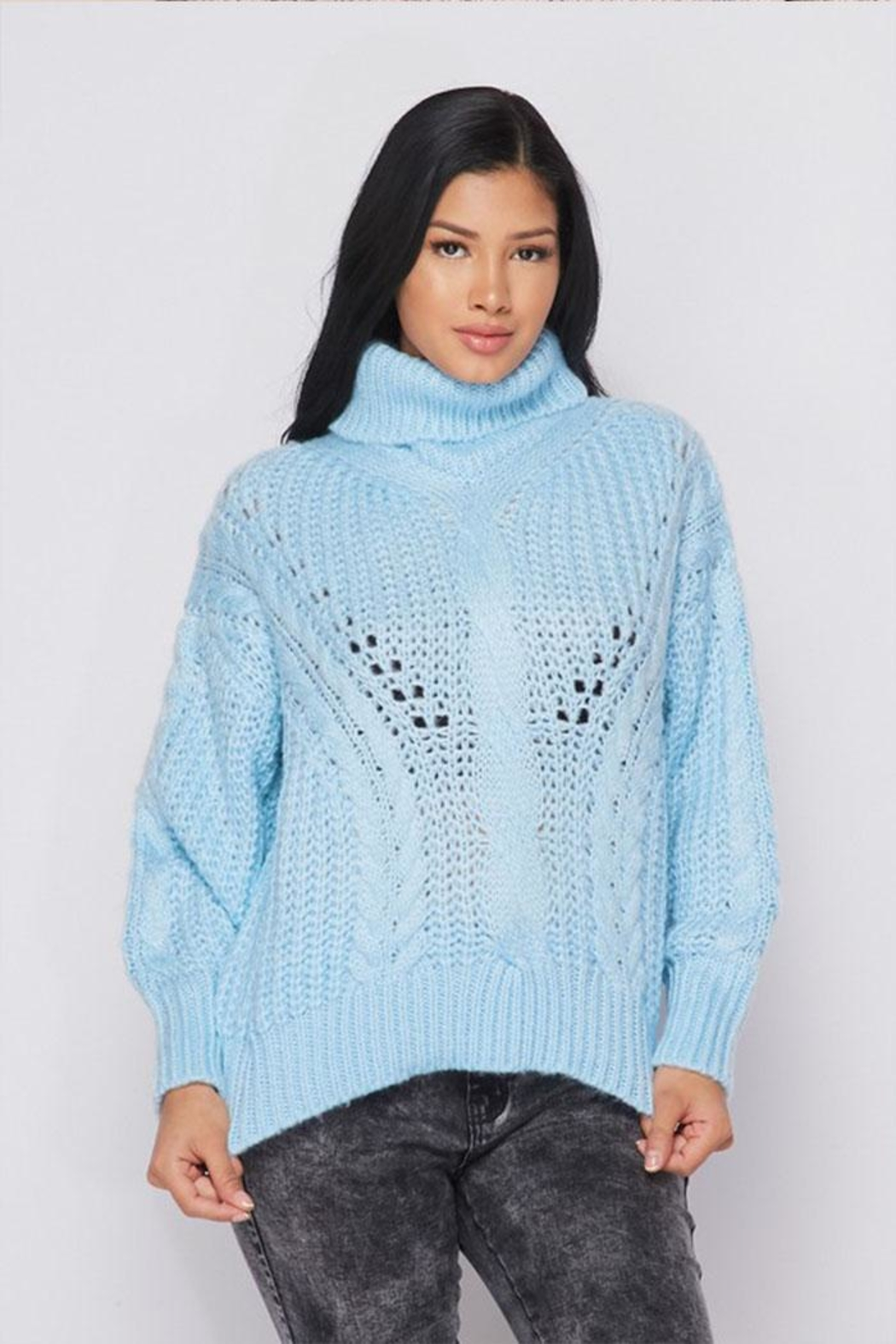 Hot & Delicious Turtle Neck Sweater - Main Image