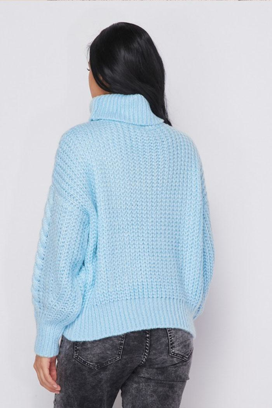Hot & Delicious Turtle Neck Sweater - Back Cropped Image