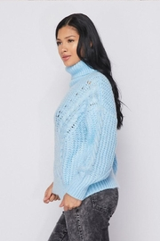 Hot & Delicious Turtle Neck Sweater - Side cropped