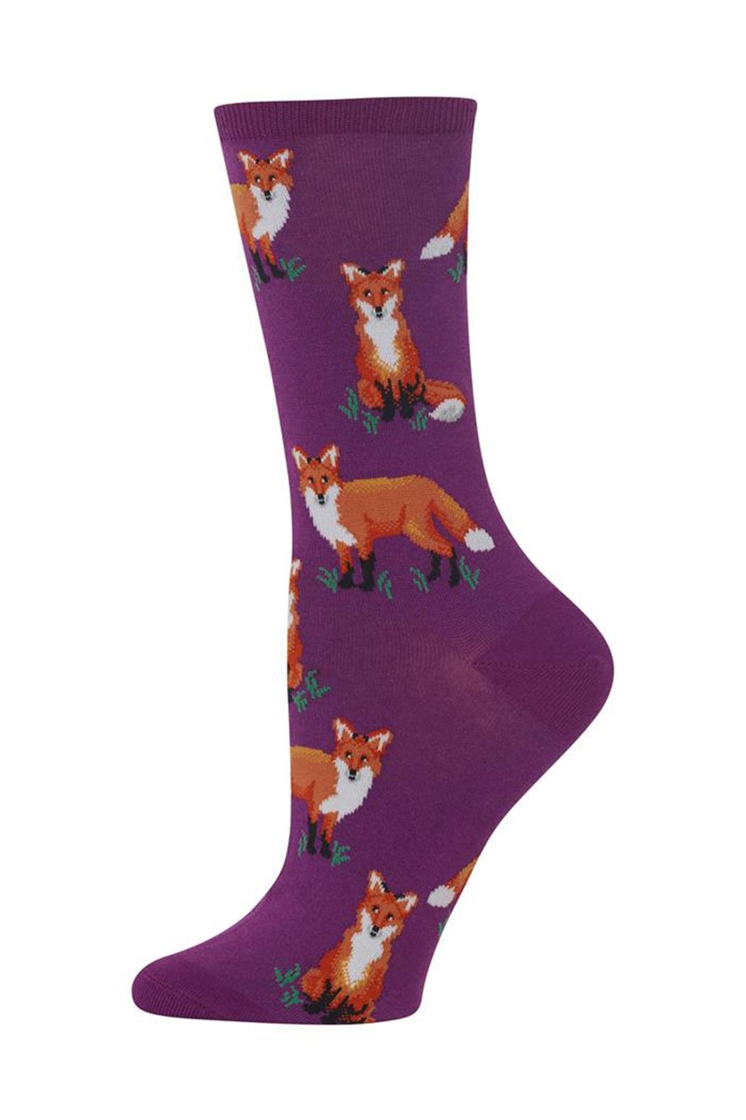 Hot Sox Fox Socks - Front Cropped Image