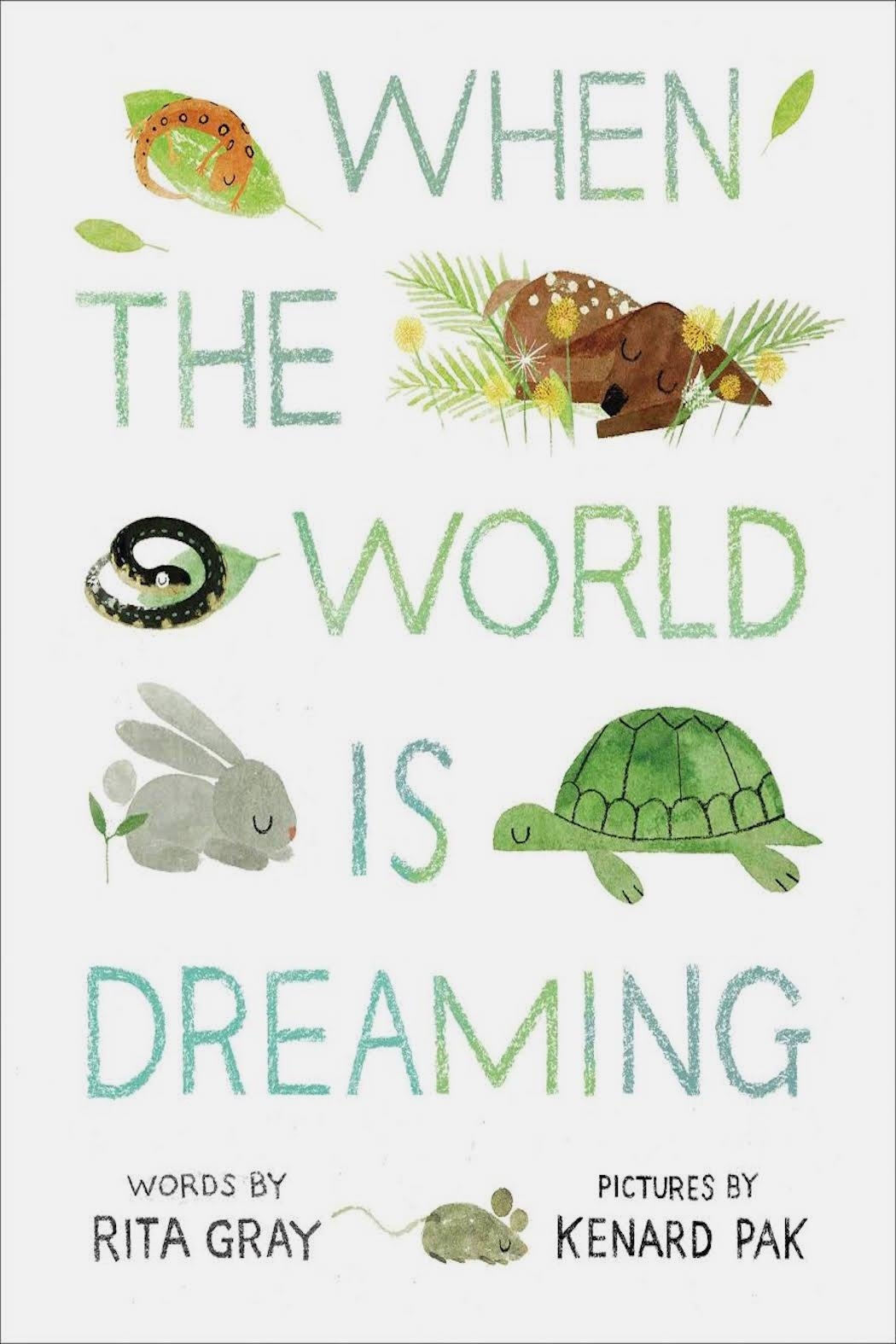 Houghton Mifflin Harcourt  Dreaming World Book - Front Cropped Image