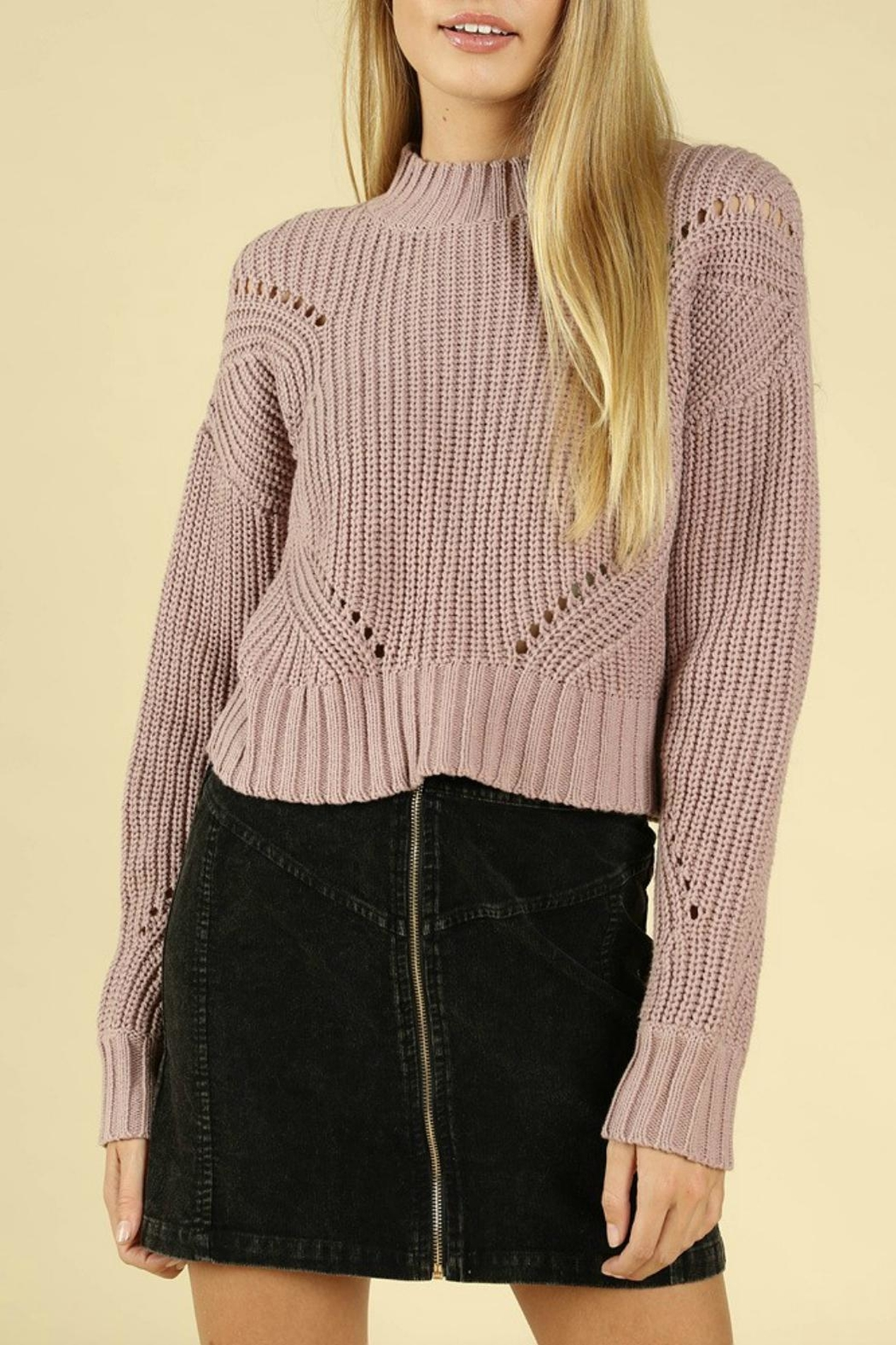 Pretty Little Things Hourglass Cropped Sweater - Front Cropped Image