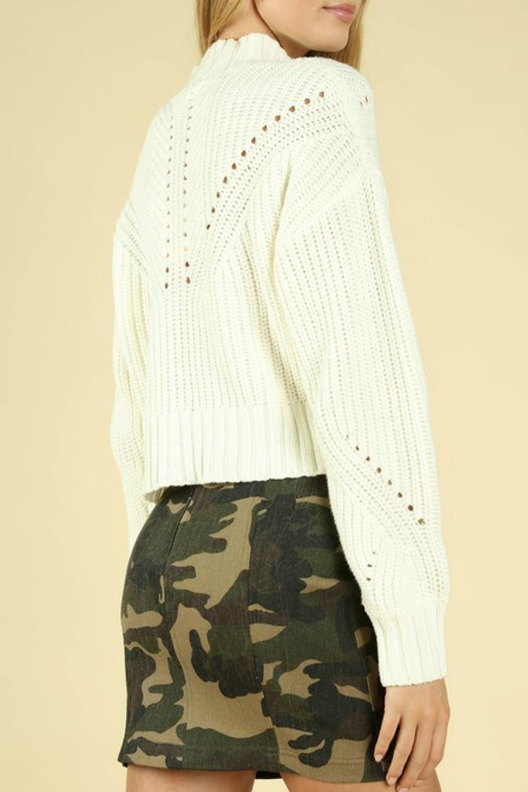Pretty Little Things Hourglass Cropped Sweater - Front Full Image