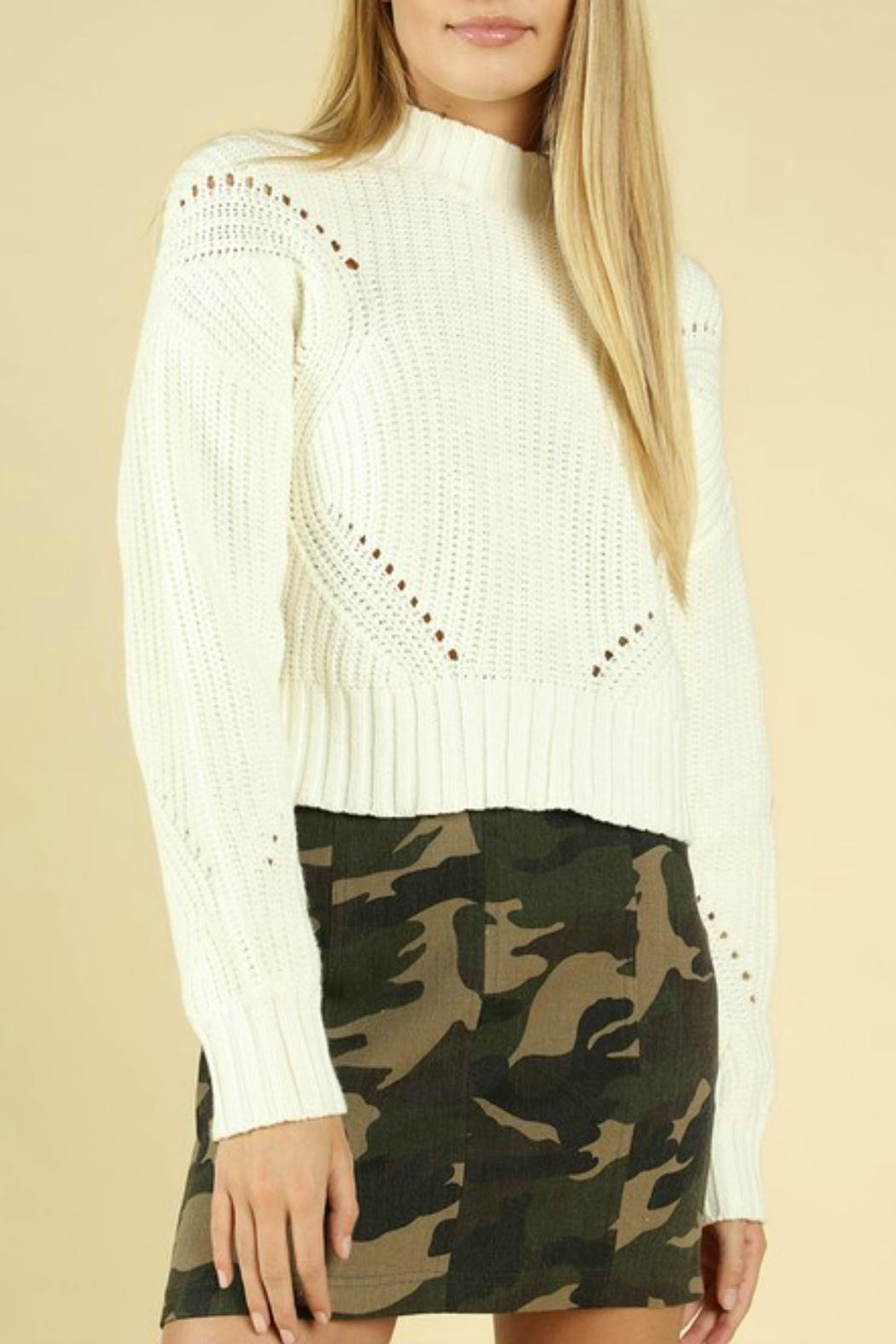 Pretty Little Things Hourglass Cropped Sweater - Main Image