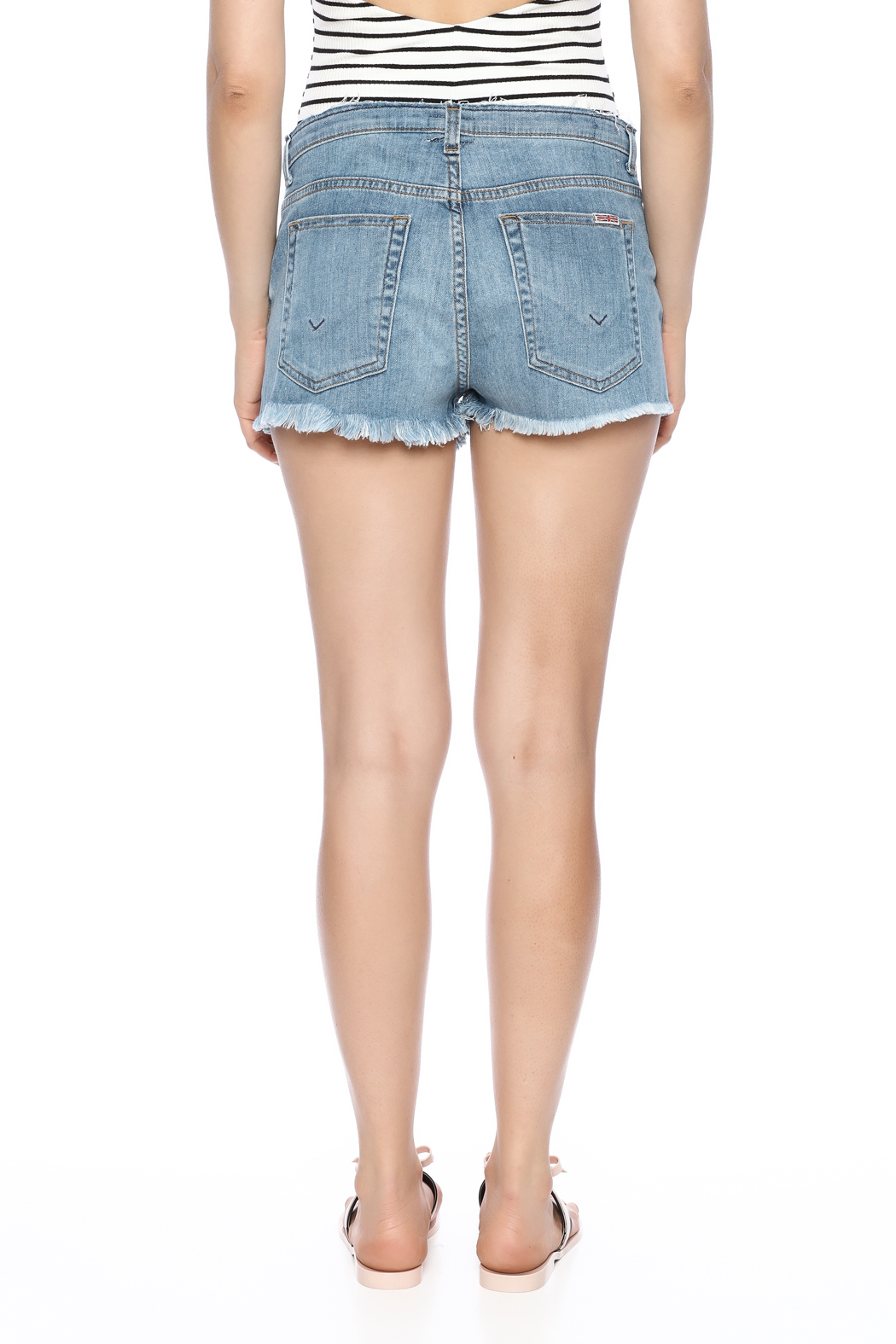 Hudson Frayed Short - Back Cropped Image