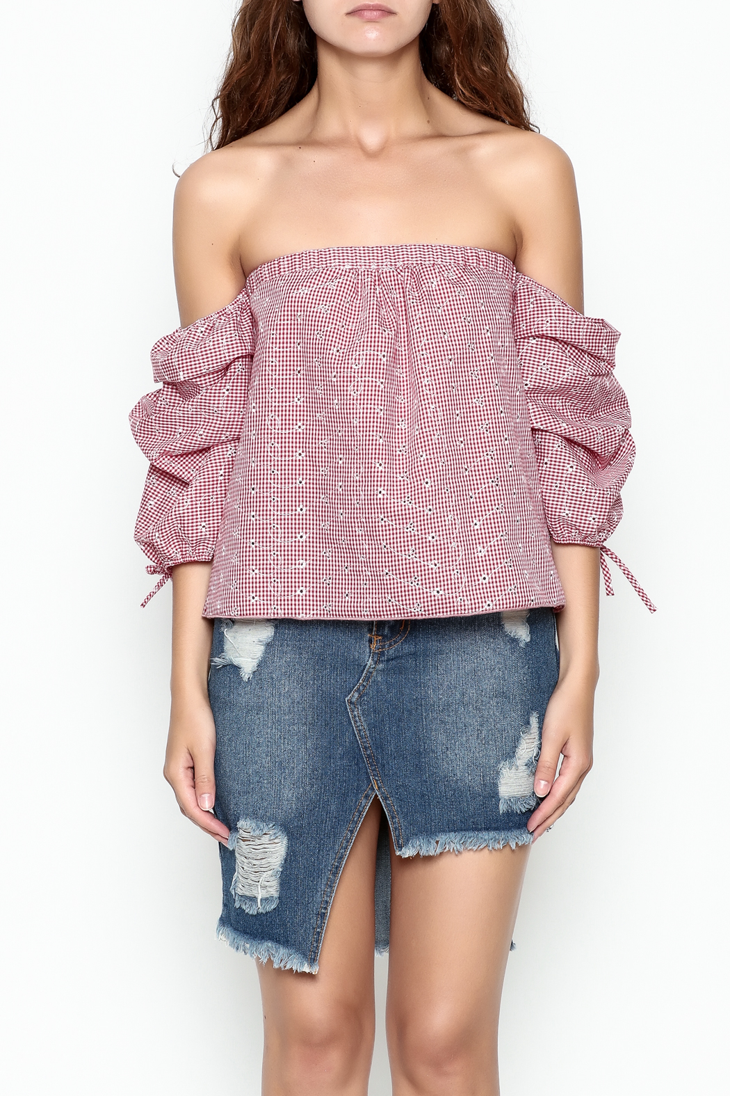 hummingbird Gingham Top - Front Cropped Image