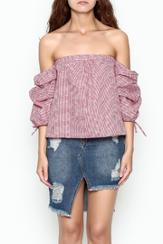 hummingbird Gingham Top - Front cropped