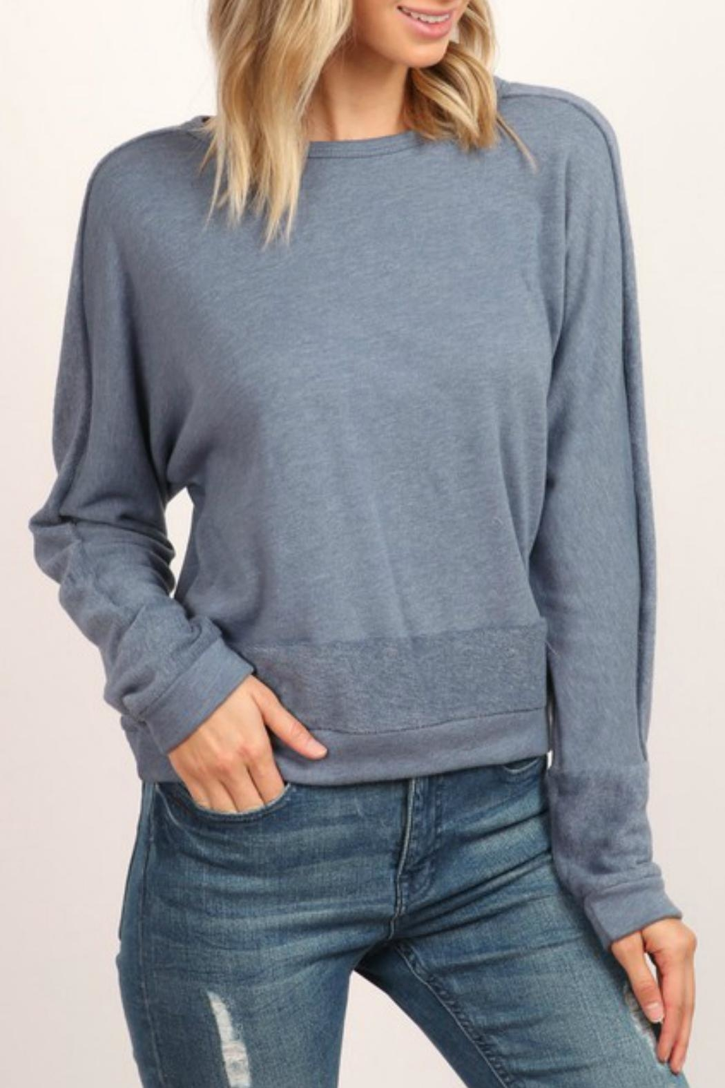 hummingbird Long-Sleeve Pullover Sweatshirt - Front Cropped Image