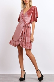 hummingbird Velvet Wrap Dress - Product Mini Image