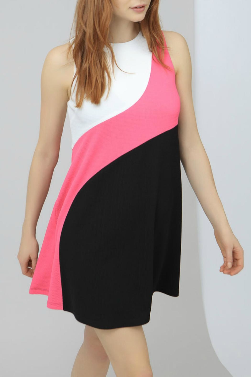 HUTCH Color Block Mini Dress - Main Image