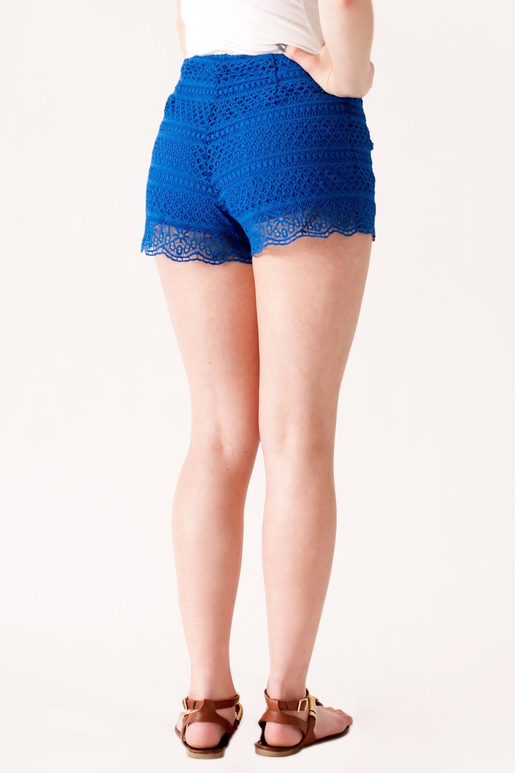HYFVE High Waisted Crochet Shorts - Back Cropped Image