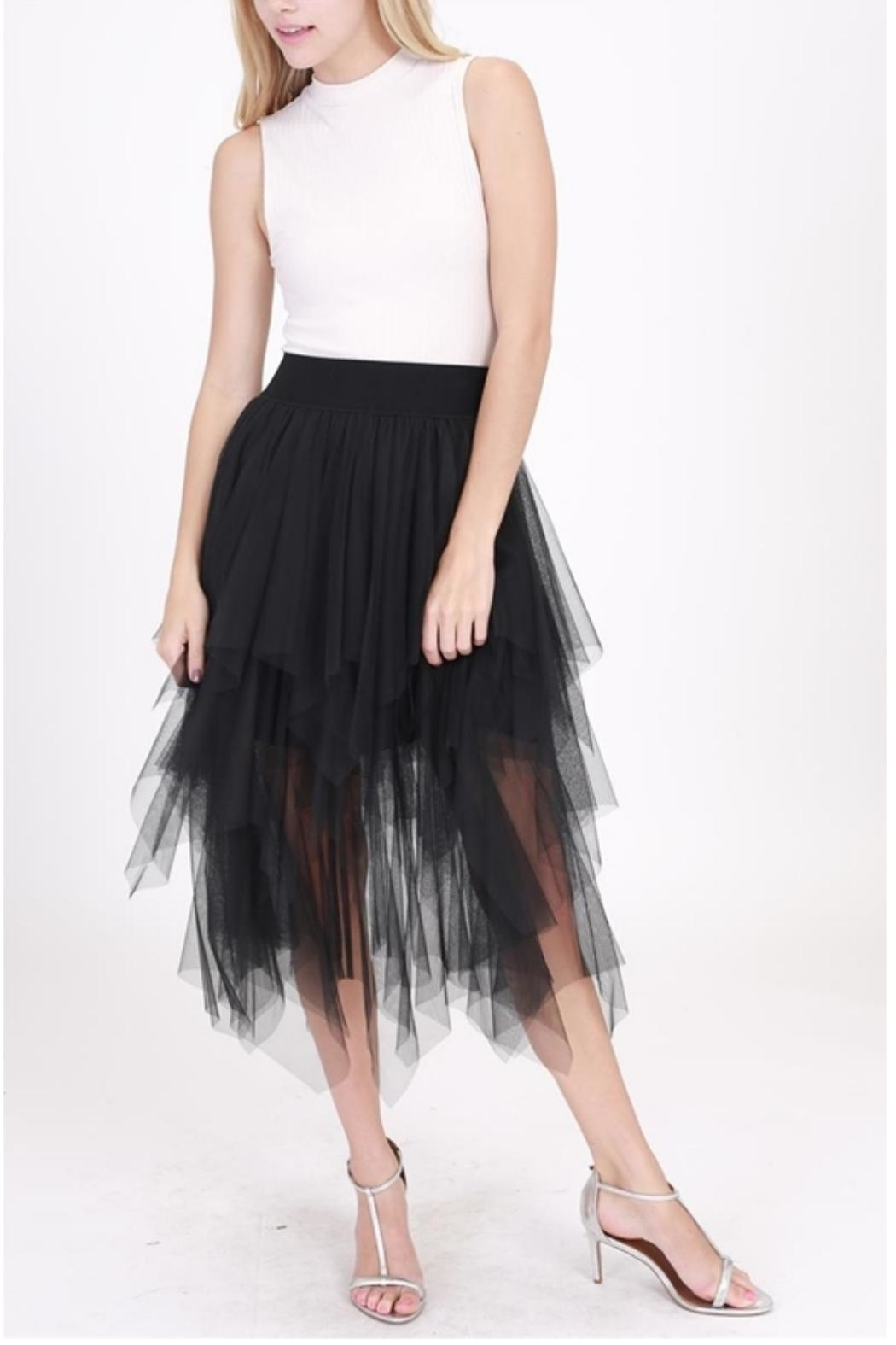 HYFVE Romantic Tulle Skirt - Front Cropped Image