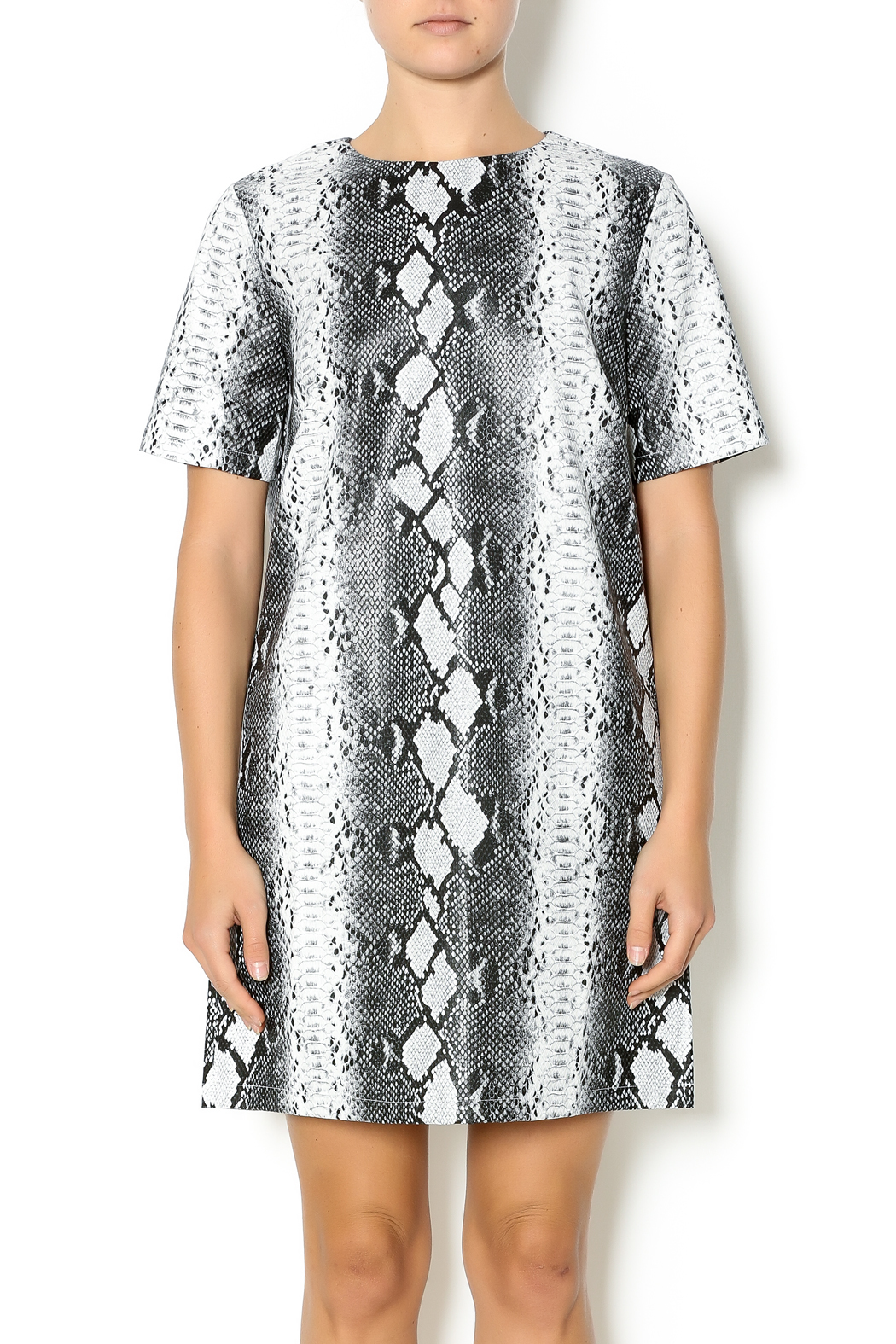 HYPR Snake Print Dress From Chicago By Blush Boutique U2014 Shoptiques