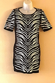 HYPR Zebra Party Dress - Product Mini Image