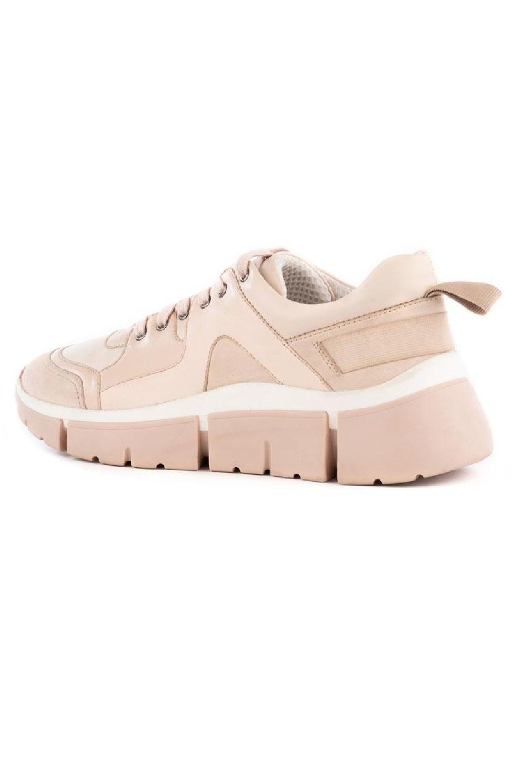 Seychelles  I'll Be There Leather Sneaker - Back Cropped Image