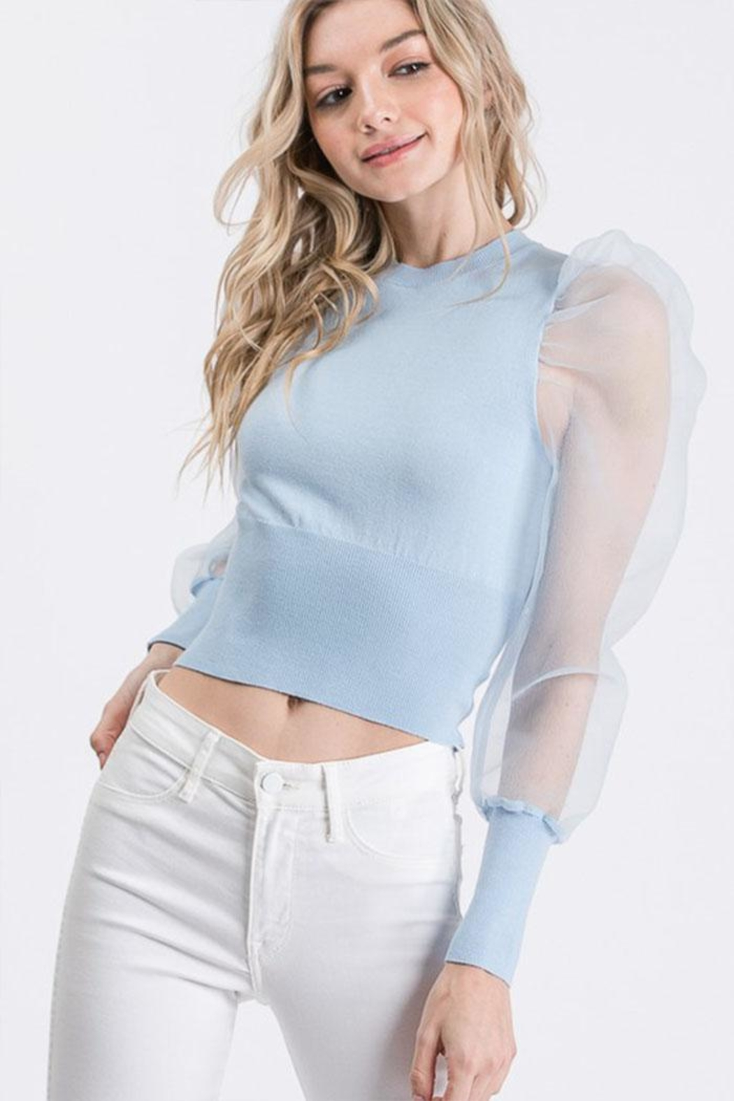 Idem Ditto  Sheer Sleeve Sweater - Front Full Image