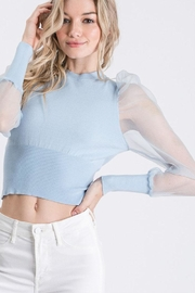 Idem Ditto  Sheer Sleeve Sweater - Front cropped