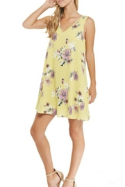 Imagine That Spring Fever Dress - Product Mini Image