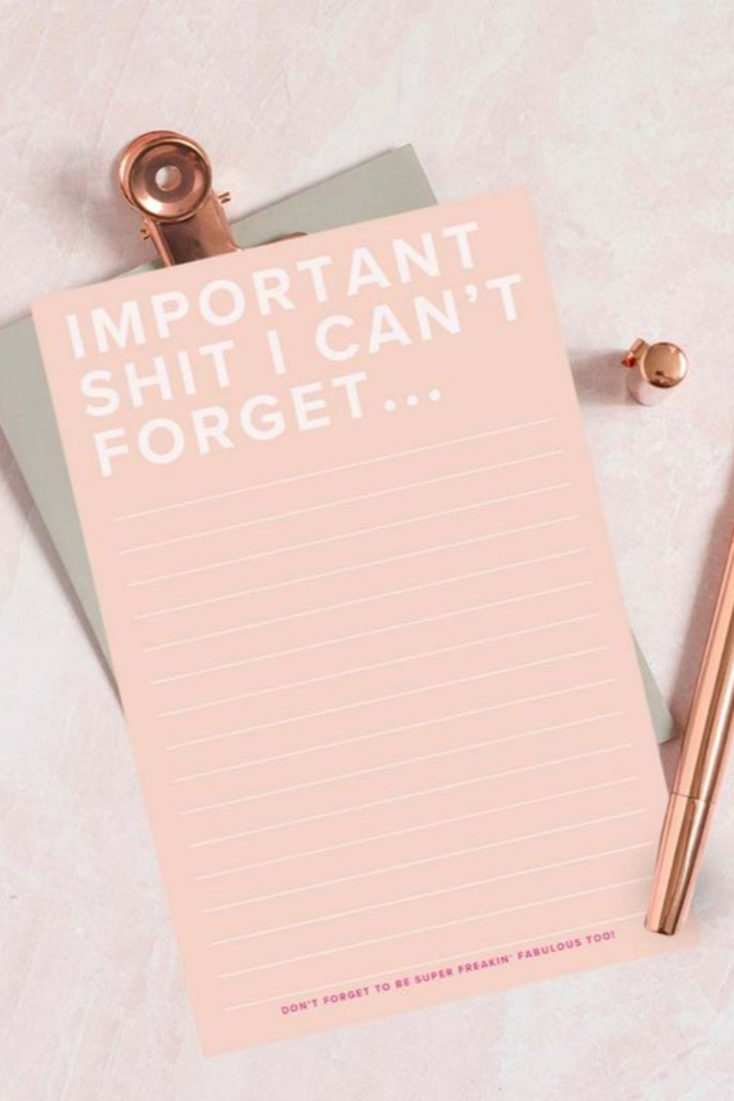 Lyn -Maree's Important $#!T I Can't Forget - Funny Blush Notepad - Main Image