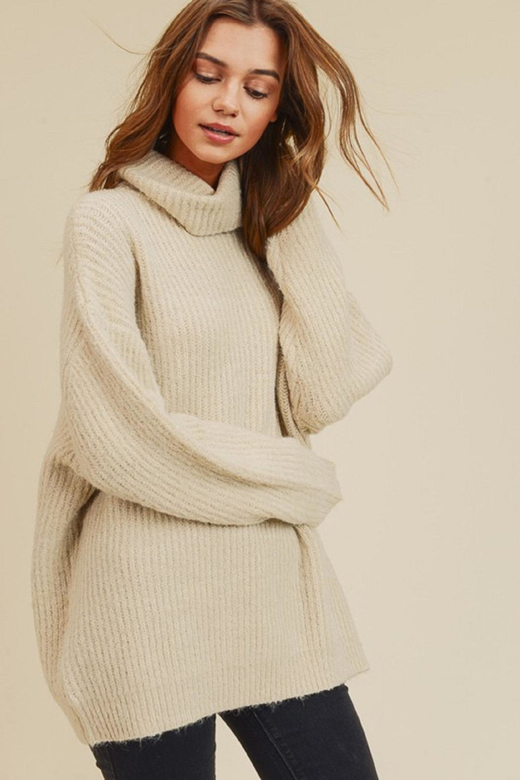 In Loom Cozy Turtleneck Sweater - Main Image