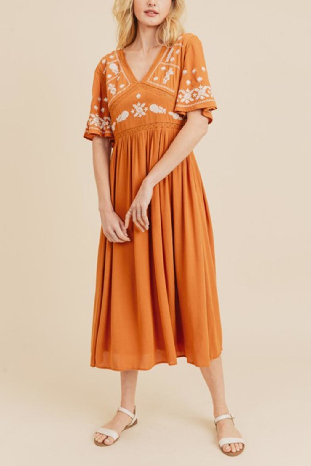 In Loom Embroidered Midi Dress - Front Full Image