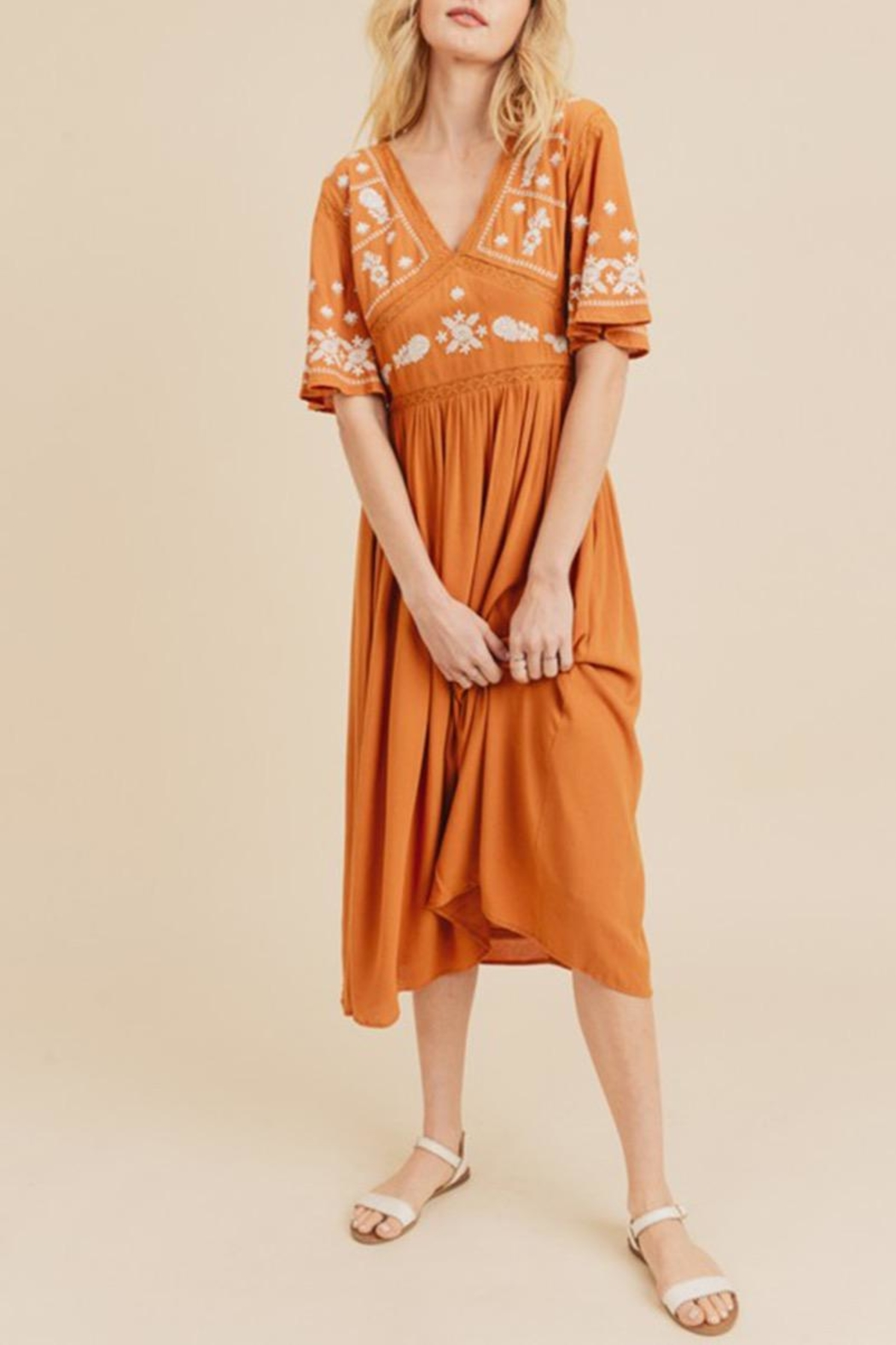 In Loom Embroidered Midi Dress - Back Cropped Image