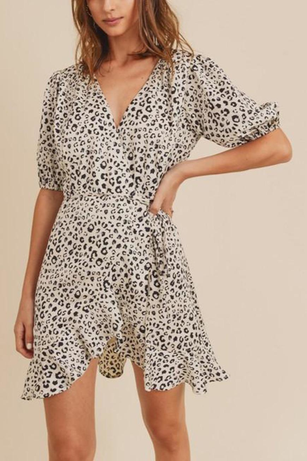 In Loom Leopard-Print Wrap Dress - Front Cropped Image
